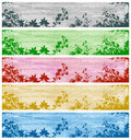 Set Of Banners With Plants And Grasses Royalty Free Stock Photography - 13073577