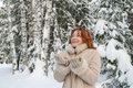 Winters Portrait Royalty Free Stock Image - 13087086