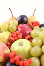 Fruits Royalty Free Stock Photography - 1311017