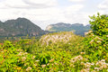 Vinales Valley Stock Photos - 13108633