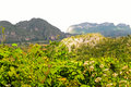 Vinales Valley Royalty Free Stock Images - 13122269