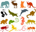 Animal Silhouettes 02 Stock Photography - 13135092