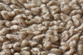Carpet Fibres Close Up Stock Image - 13203981