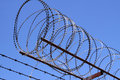 Razor Wire Royalty Free Stock Photography - 13204067