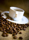 Coffe Drink Royalty Free Stock Photos - 13218058