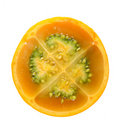 Citric Fruit Stock Image - 13228861