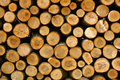Pile Of Wood Royalty Free Stock Photo - 13250035