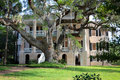 Historical Southern Mansion Royalty Free Stock Photo - 13250865