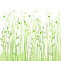 Floral Background, Meadow Stock Photo - 13312600
