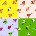 Birds Seamless Pattern Tiles Stock Photography - 13320002