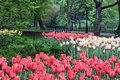 Central Park In Spring Stock Images - 13322014