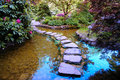 Japanese Garden Pond Stock Images - 13332934
