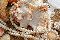 Background With Cockleshells And Pearls Royalty Free Stock Photo - 13362835