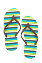 Flipflops Royalty Free Stock Image - 13373446