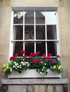 Sash Window And Flower Box Stock Images - 13379884