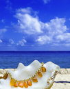 Shell Lays With Amber Bead On Background Of Ocean Stock Images - 13379954
