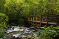 Great Smoky Mountains National Park Royalty Free Stock Photo - 13399875