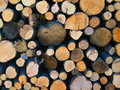 Logs Stock Photography - 1342512