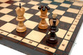 Checkmate Royalty Free Stock Image - 13407176