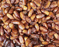 Earth Treasures, Dried Nuts & Fruits Stock Image - 13455621