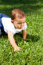 Baby Girl Crawling Royalty Free Stock Images - 13554279