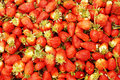 A Pile Of Strawberries Stock Photo - 13577010