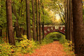 Brick Bridge In The Autumn Forest Royalty Free Stock Photography - 1368307