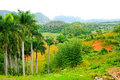 Vinales Valley Royalty Free Stock Image - 13609166
