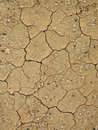 Detail Of Dry Loam Earth Royalty Free Stock Images - 13651939