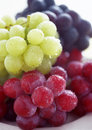 Ripe Grapes Stock Photography - 13670002