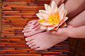 Manicure And Pedicure Stock Image - 13673011
