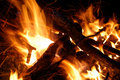 Fire Royalty Free Stock Photography - 13687837