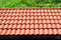 Red Roof With Tree Royalty Free Stock Photo - 13714145
