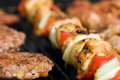 Meat And Skewers On The Grill Royalty Free Stock Images - 13776279
