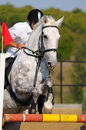 Rider In Jumping Show Royalty Free Stock Image - 13778366