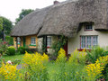 Typical Thatched Roof Cottage In Ireland Stock Image - 13779481