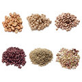 Legumes Collection Royalty Free Stock Photography - 13783987