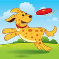 Running Dog Royalty Free Stock Images - 13792309