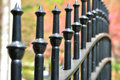 Cast Iron Fence In A Park Stock Image - 13797071