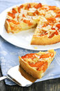 Slice Of Apricot And Almond Pie Stock Images - 13799114
