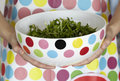 Polka Dots Bowl Of Dandelion Salad And Apron Stock Photo - 13814610