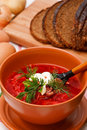 Homemade Red Borsch Royalty Free Stock Photos - 13822688