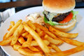 Fast Food Hamburger And French Fries Stock Photography - 13831752