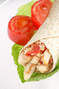 Chicken Wrap Stock Image - 13880041