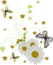 Three Butterflies And Chamomiles On White Stock Photo - 13886920