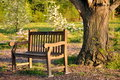 Garden Bench Royalty Free Stock Photography - 13896297