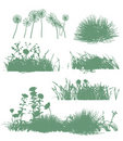Trees And Grass Silhouettes Royalty Free Stock Images - 13910049