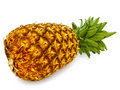 Pineapple Stock Images - 13926764