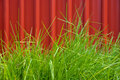 Grass Stock Photography - 13951442
