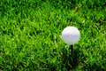 Golf Ball On The Green Grass Stock Image - 13962891